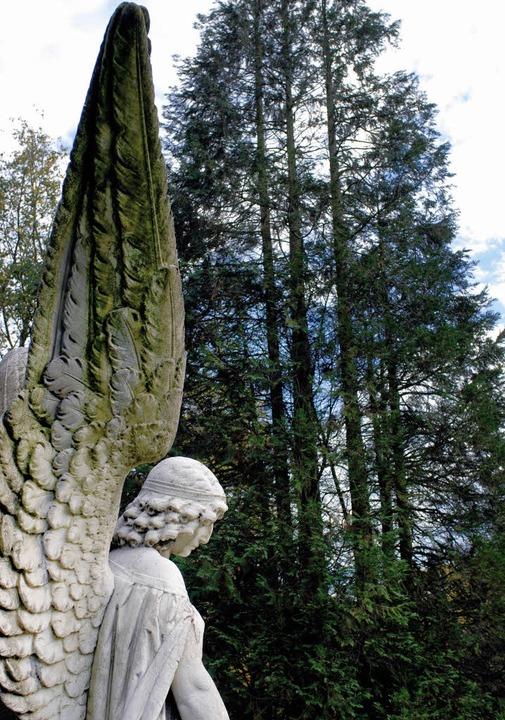 Der Friedhofsengel als Bild des angehaltenen Augenblicks   | Foto: schindler