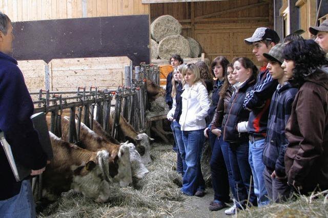 Gymnasiasten besuchen Präger Biobauernhof