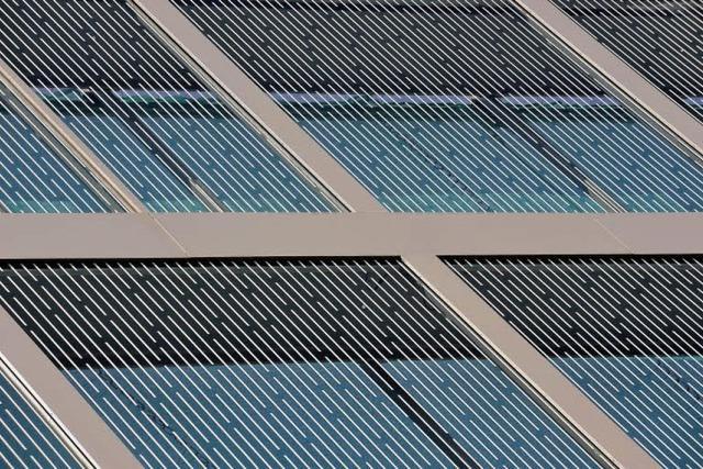 Gemusterte Glasfronten schützen Vögel