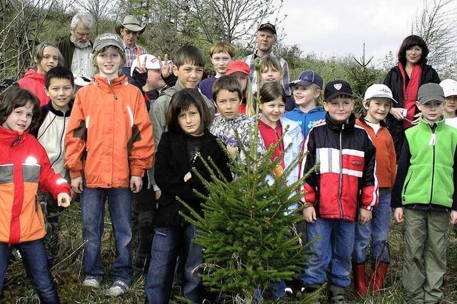 65 Bäume gepflanzt und dann ein leckeres Vesper