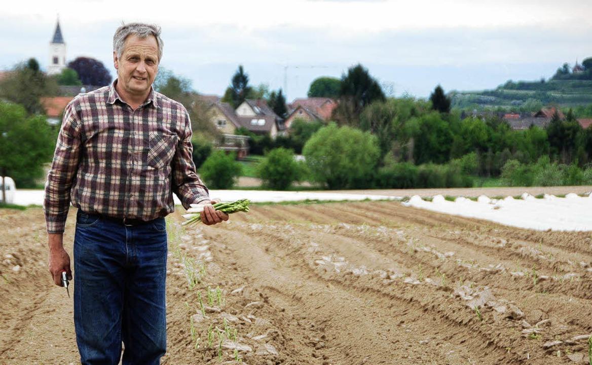 Veronika, der Spargel  wächst: Landwirt  Hörner  | Foto: Hupka