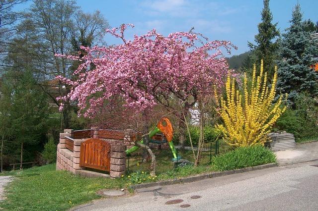 Frühlingshafter April mit viel Sonne