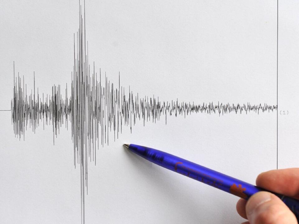 Das Seismogramm des Erdbebens.  | Foto: dpa