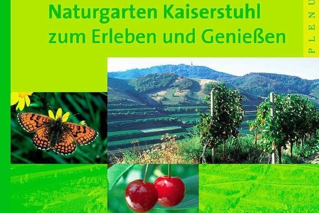 Plenum – Vorbild für den Hochschwarzwald