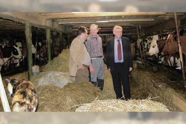 Glückliche Kühe, gefährdete Bauern