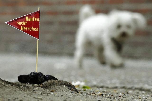 Ortsvorsteherin geht gegen den Hundekot vor