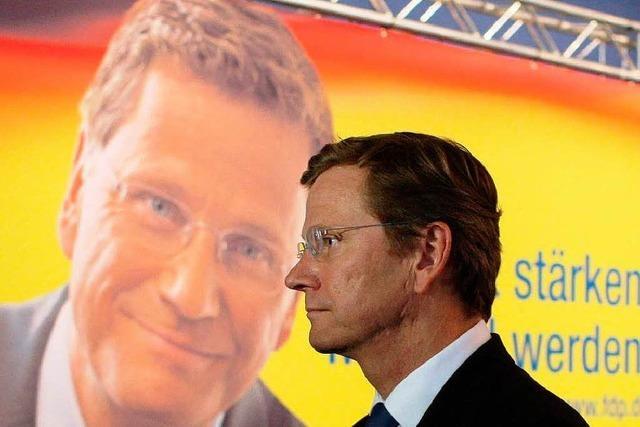 FDP will Richtungsentscheidung für Steuerreform