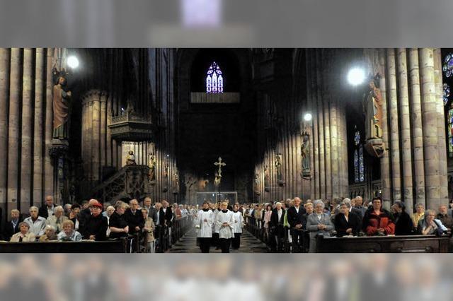Alte Gotik in neuem Licht
