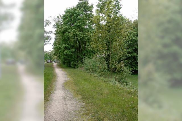 Ein Industriegebiet war in Badenweiler überhaupt nie geplant