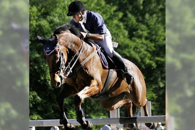 Satteln, reiten, absatteln – und aufs nächste Pferd