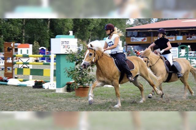 Drei Tage lang ein Treffpunkt für Reiter und Pferdefreunde