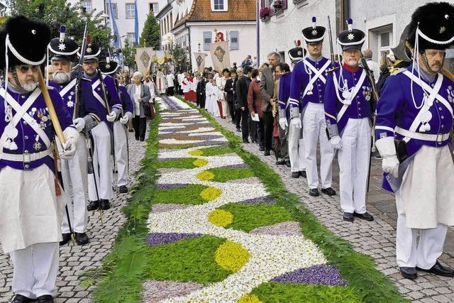 Viele tausend Besucher bewundern die Blütenpracht