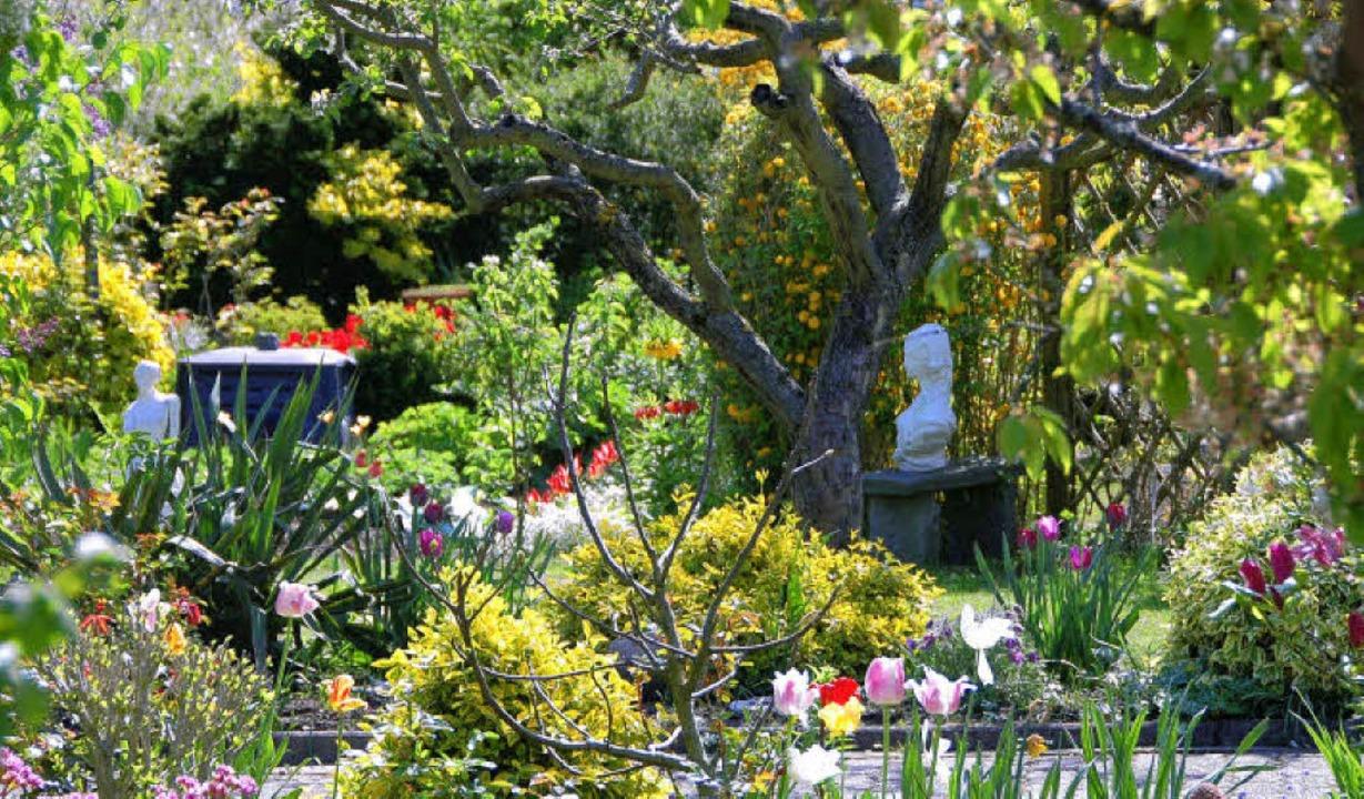 Kleingartenanlage Lerchengrund    Foto: Sabine Ehrentreich
