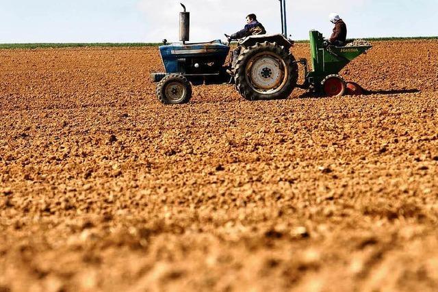3,5 Millionen Euro Agrarbeihilfen fürs Elztal
