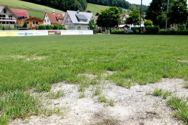 Kunstrasen-Beschluss sorgt beim SV Dörlinbach für Verdruss