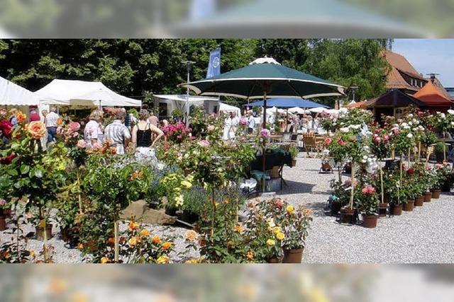 Ein blühender Garten rund ums Schloss Ebnet