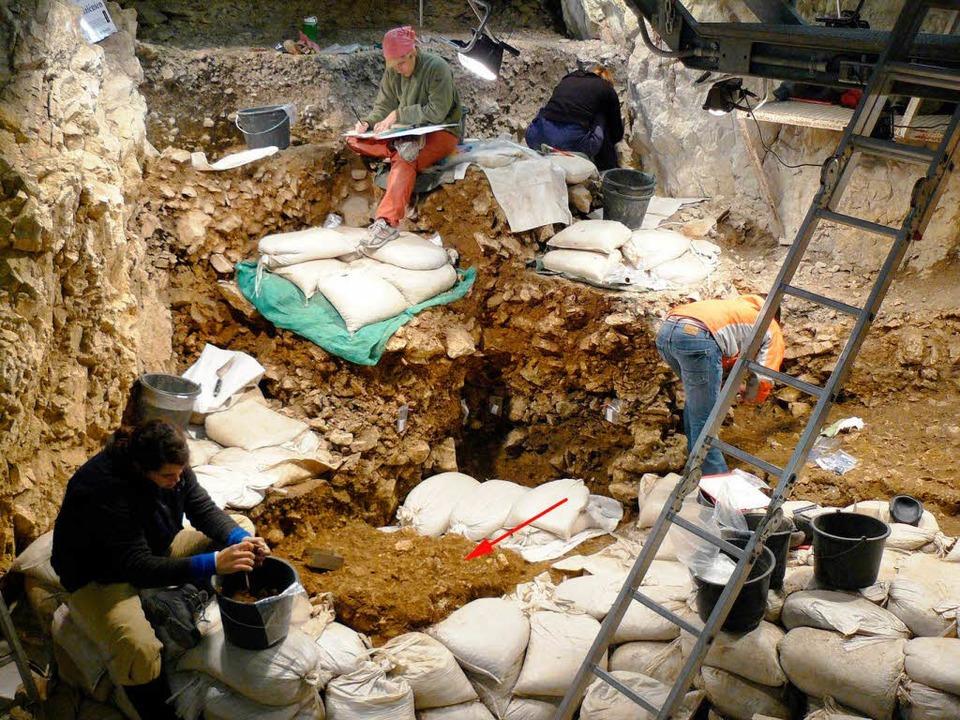 Die Fundstätte in der  Höhle am Hohlen Fels.   | Foto: Nature