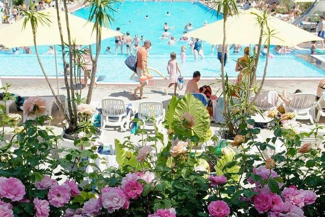 Rosenabend im Ettenheimer Schwimmbad