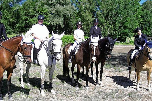 Toller Pferdesport