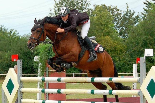 Regen hilft Reitern und Pferden
