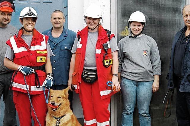Hunde lassen sich vom Lärm der Pumpen nicht stören