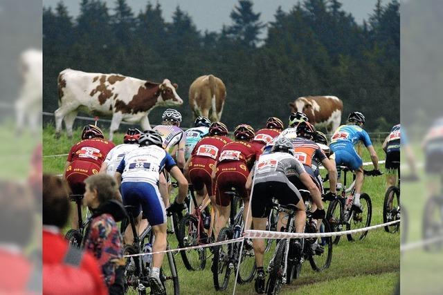 Mountainbiken mit olympischem Adel