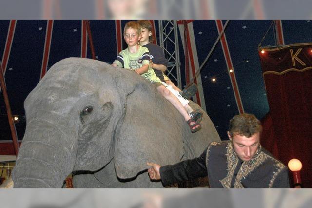 Ritt auf der Elefantendame Sarah