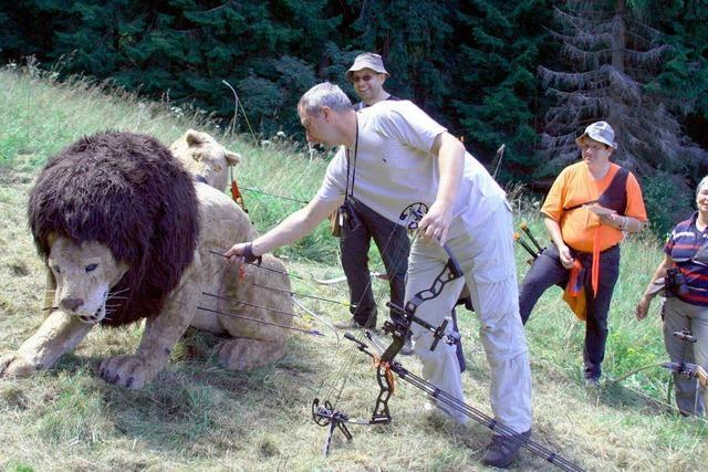 Wo sich Löwe und Bär treffen