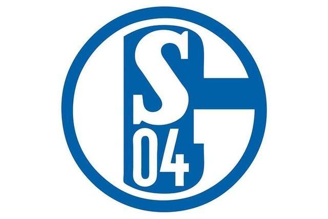 Woher kommen die Spieler von Schalke 04?