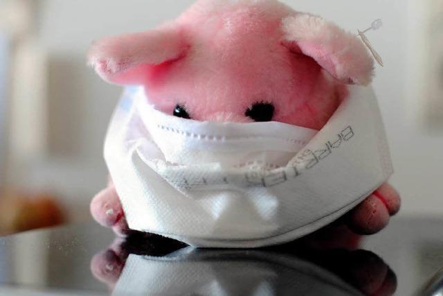 Schweinegrippe hält Freiburger Gesundheitsamt auf Trab