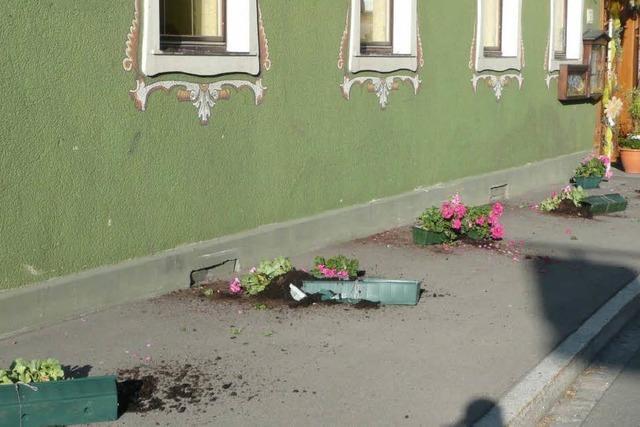 Opfer von Zerstörungswut