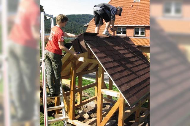 Schüler bauen Holzhaus