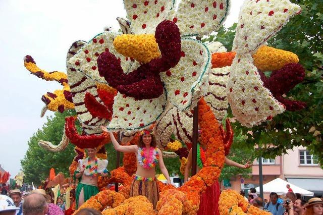 Fotos: 80. Blumenkorso in Sélestat