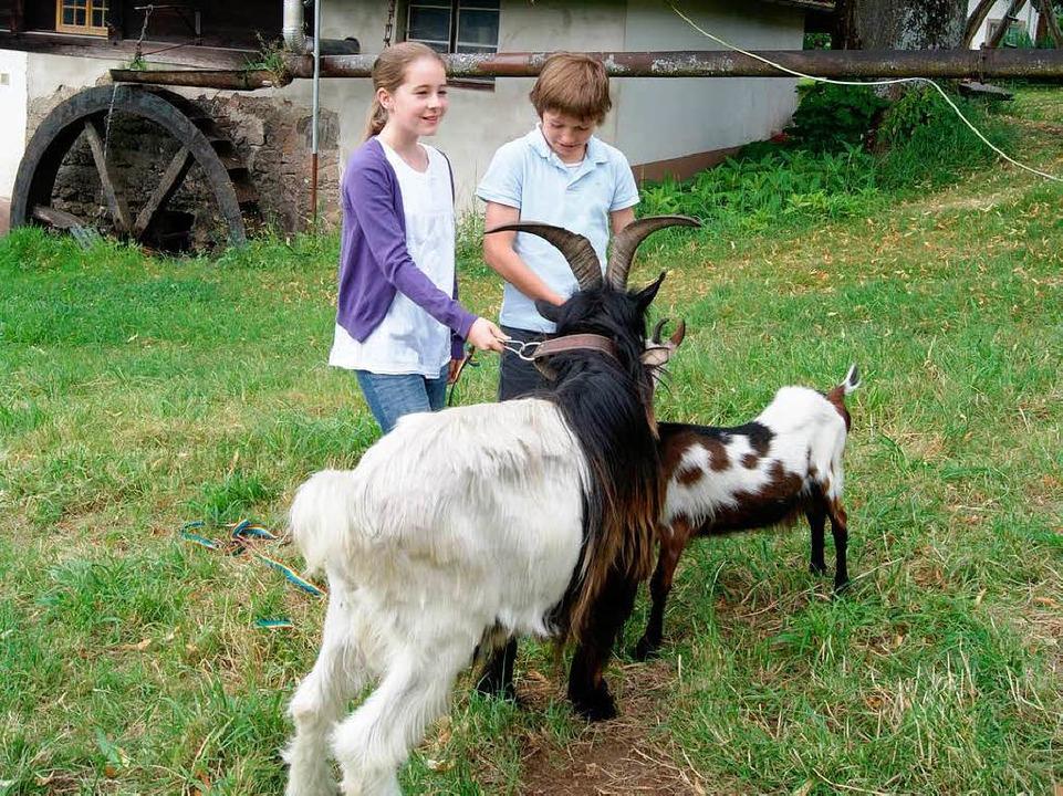 Die beiden jungen Hauptdarsteller Gret...nkel) bei der Probe zu einer Tierszene    Foto: karlheinz scherfling