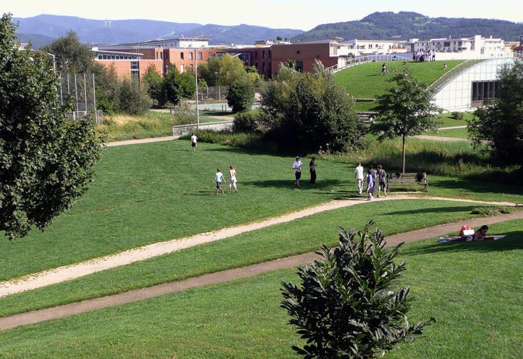 Zum Rieselfelder Stadtteilpark gehört ...halle der Clara-Grunwald-Grundschule.     Foto: Andreas Braun