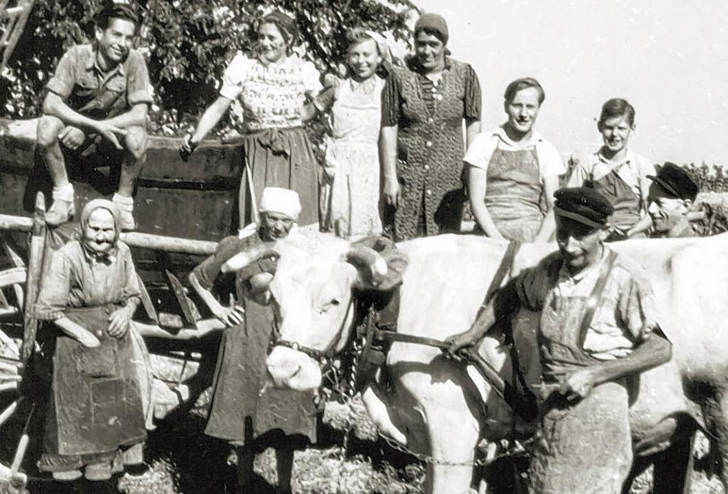 Ein historisches Foto aus vergangener Zeit: einige Gottenheimer beim Hersten.  | Foto: WG Gottenheim