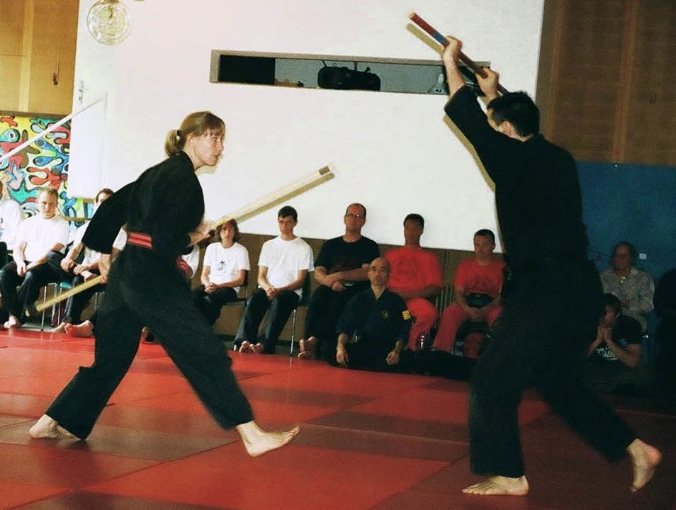 Bei 20 verschiedenen Kampfkünsten prob...erlernen beziehungsweise  verbessern.   | Foto: privat