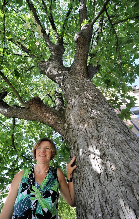 Naturdenkmal mit Umweltbürgermeisterin     Foto: Michael Bamberger
