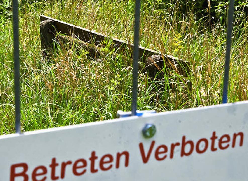 Unerreichbarer Rastplatz: Die Natur erobert sich das Sperrgebiet zurück.  | Foto: Hagen Schönherr