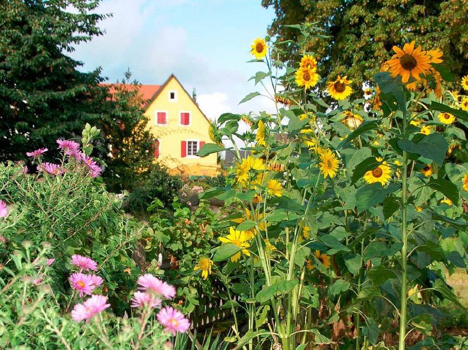 Johanna Schneiders Bauerngarten  | Foto: sigrid umiger