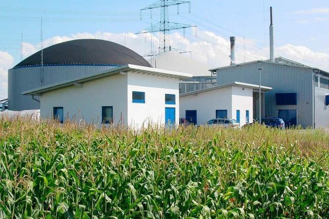 Großes Interesse an Biogas-Fachkongress