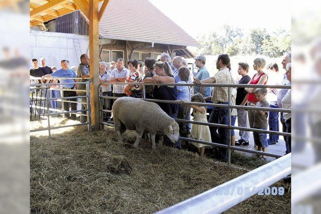 Unterhaltsame und informative Reise für Schafhalter