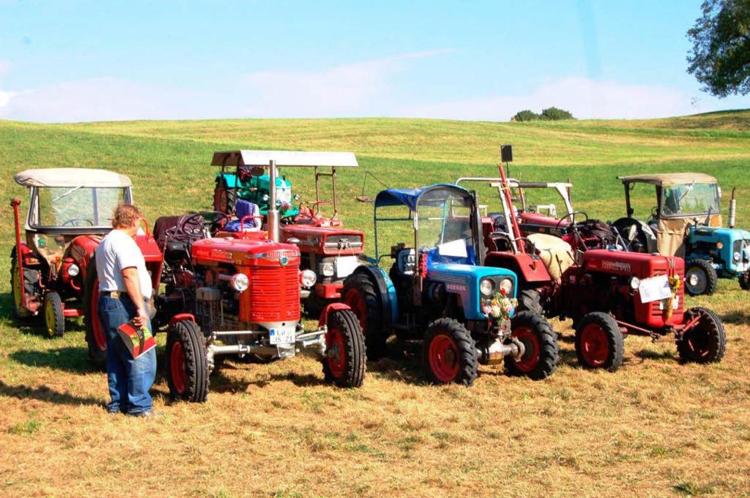 Überall Traktoren  | Foto: Bernhard Birlin