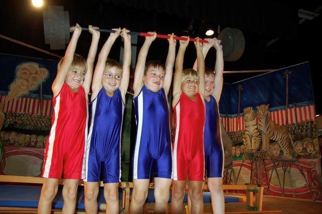 Vorhang auf im Zirkus