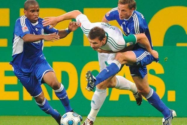 Sieg gegen Schalke: Wolfsburg stoppt die Talfahrt