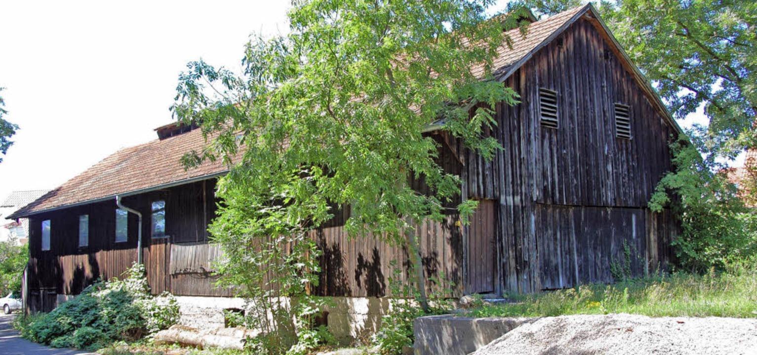 Wird  mit großem Aufwand restauriert: die historische Säge in Zarten     | Foto: Karlheinz Scherfling