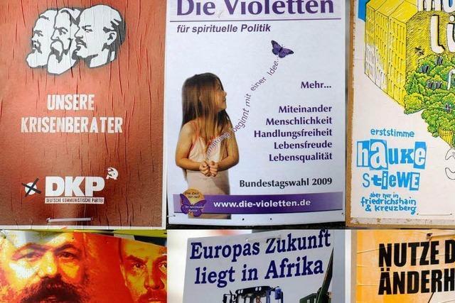 Kleinparteien bei der Wahl: Vielfalt im Promillebereich