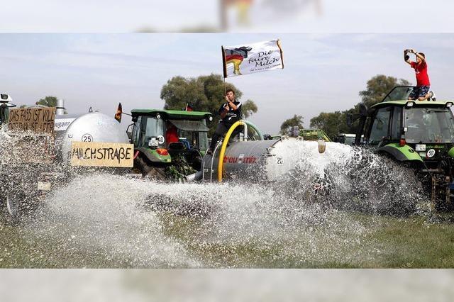 Merkel lädt zum Milchgipfel