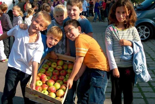 Schüler erhalten jeden Tag einen frischen Apfel