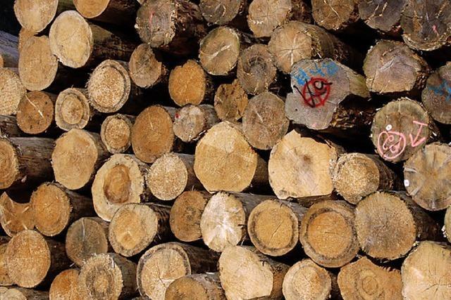 Finanzkrise lässt Holzpreise weiter sinken